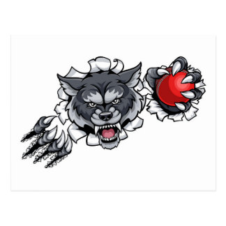 Wolf Cricket Mascot Breaking Background Postcard