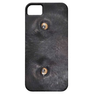 Wolf Eyes iPhone 5 Cover