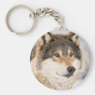 Wolf Face close-up Keychain