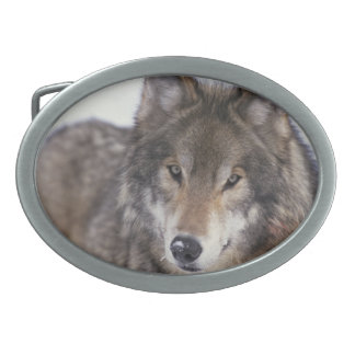 Wolf Face Design Belt Buckle