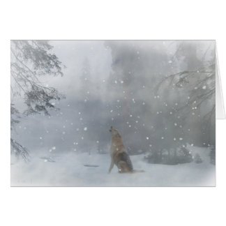 Wolf Happy Holidays Christmas Card