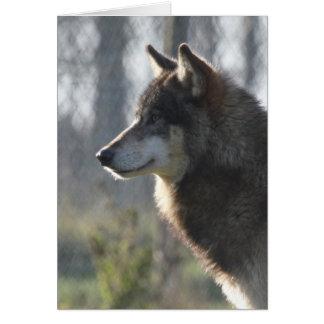 Wolf head card