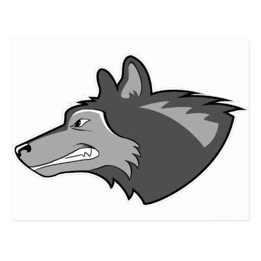 Wolf in Sleek Gray Post Card