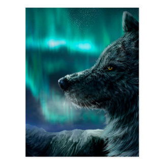 Wolf in the Night Postcard