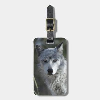 Wolf in Yellowstone Luggage Tag