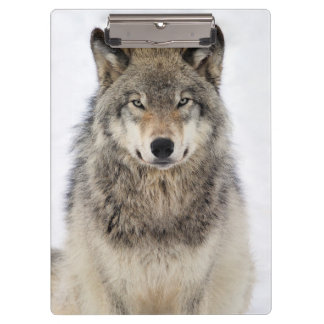 Wolf Love Clipboards