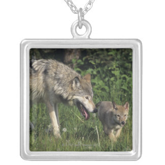 Wolf mother with young pup silver plated necklace