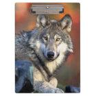 Wolf Photograph Clipboard