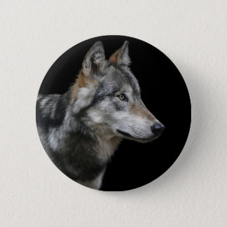 Wolf Portrait Black Background Predator Carnivore 2 Inch Round Button