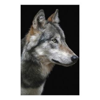 Wolf Portrait Black Background Predator Carnivore Stationery