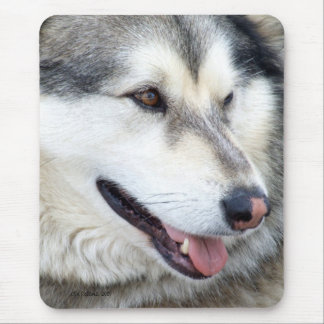Wolf Portrait Mouse Pad