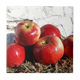 Wolf River Apples Tiles