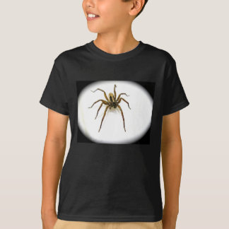 Wolf Spider Male (Lycosidae) Kid T-Shirt