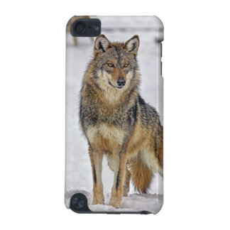 Wolf Standing Proud iPod Touch (5th Generation) Case