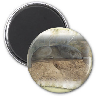 Wolf Thoughts 2 Inch Round Magnet