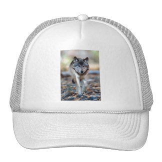 WOLF WALKING TRUCKER HAT