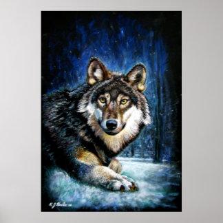Wolf Wildlife print poster