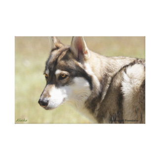 Wolf Wrapped Canvas Canvas Prints