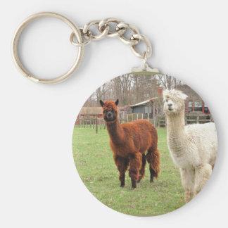 Wolly Alpacas ~ keychain