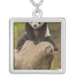Wolong Panda Reserve, China, Baby Panda on top Silver Plated Necklace