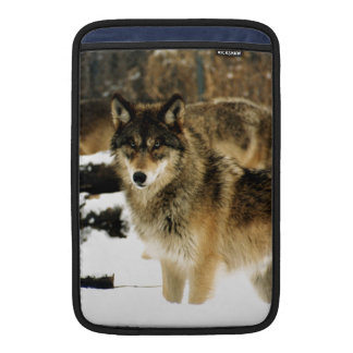 Wolves in The Snow MacBook Sleeve