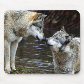 Wolves - Nose to Nose Mouse Pad