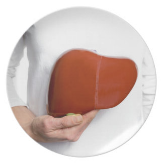 Woman holding human liver model at white body plate