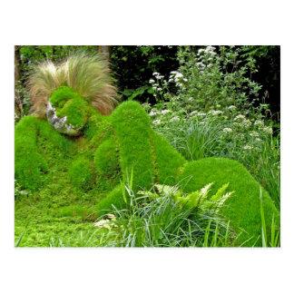 Woman of Grass Postcard