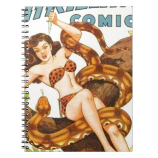 Woman with a Snake Notebooks