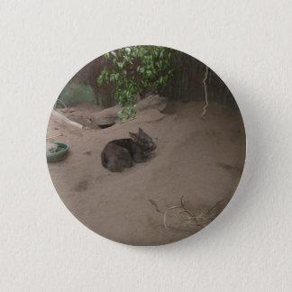 Wombat 2 Inch Round Button