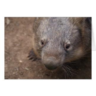 Wombat Kiss Card