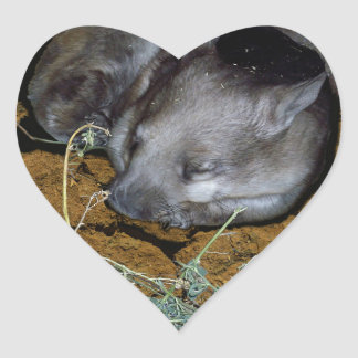 Wombat_Siesta_Time,_ Heart Sticker