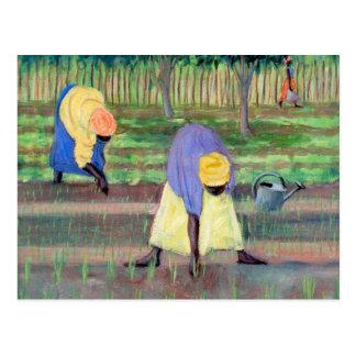 Women Gardening 2005 Postcard
