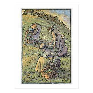 Women Gathering Mushrooms, from 'Travaux des Champ Postcard