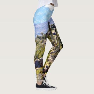 """Women's Leggings """"Saguaro in Mountains"""""""