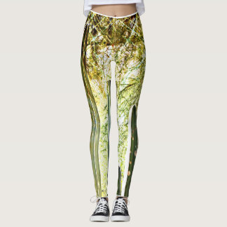 "Women's Leggings ""Songbird on Stove Pipe Cactus"""