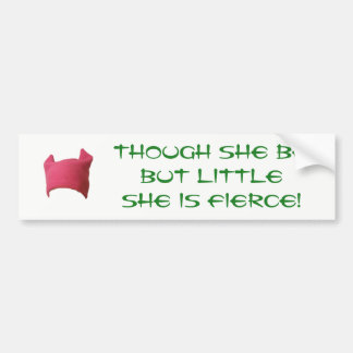 Women's March 2017 Bumper Sticker