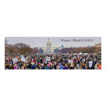Women's March Protesters in Washington DC Poster