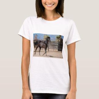 Women's - Sassy T-Shirt