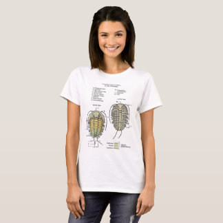 Women's Trilobite Diagram T-Shirt