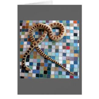 Wonder Valley Snake Card