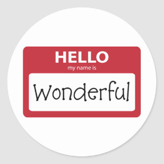 wonderful 001 classic round sticker