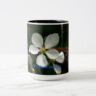 Wonderful blossoms Two-Tone coffee mug