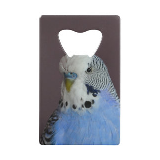 Wonderful Budgie Credit Card Bottle Opener