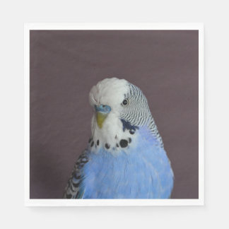 Wonderful Budgie Disposable Napkin