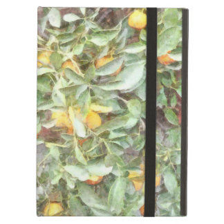 Wonderful Chinese Orange plant Cover For iPad Air