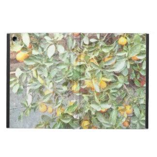 Wonderful Chinese Orange plant iPad Air Covers