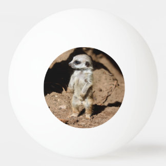 Wonderful Cute Sweet African Meerkat Animal Ping-Pong Ball