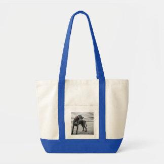 Wonderful Dog Bags