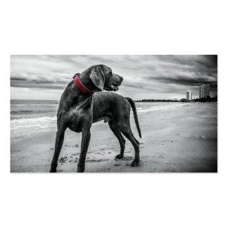 Wonderful Dog Business Card Template